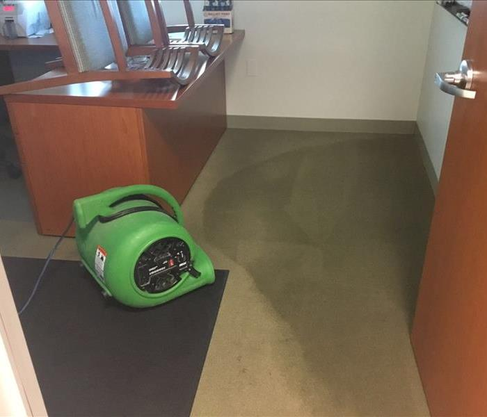 Wet Carpet Affected by Water Damage